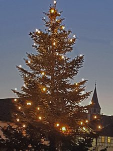 Trotzt der Corona-Pandemie: Weihnachtsbaum in Lienzingen